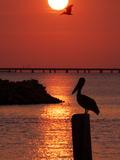 APTOPIX Pontchartrain Sunset Lámina fotográfica por Ann Heisenfelt
