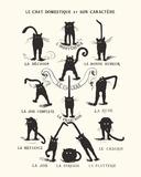 French Caractere Le Chat Domestique et son Caractere Affiche originale