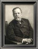 Louis Pasteur (1822-1895) Framed Photographic Print by Gaspard Felix Tournachon Nadar