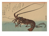 Shrimp and Lobster (Ise Ebi to Shiba Ebi) Láminas por Ando Hiroshige
