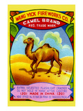 Wang Yick Fireworks Camel Brand Posters