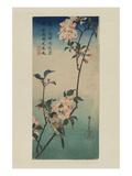 Small Bird on a Branch of Kaidozakura (Kaido Ni Shokin) Prints by Ando Hiroshige