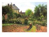The Artist Garden at Eragny Poster di Camille Pissarro