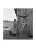 Poverty with Rife and Cattle Skulls Plakater af Dorothea Lange