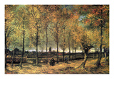 Lane with Poplars Posters av Vincent van Gogh