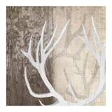 Deer Lodge I Affiche par Tandi Venter
