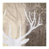 Deer Lodge II Affiches par Tandi Venter