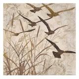 Birds in Flight 1 Julisteet tekijänä Melissa Pluch