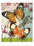 Bountiful Butterfly 1 Poster by Walter Robertson