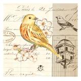 Bird Sketch 2 Kunstdrucke von Chad Barrett