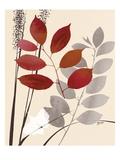 Spring Leaf 1 Kunstdrucke von Bella Dos Santos
