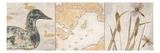Rustic Lake Panel Láminas por Arnie Fisk