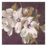 Plum Blossoms 2