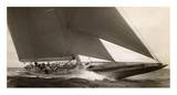 J Class Sailboat, 1934 高品質プリント : エドウィン・レヴィック