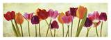 Tulip parade Print by Luca Villa