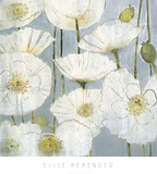 White Poppies Prints by Elise Remender