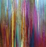 Sunset Falls I Poster af John Butler