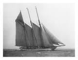 The Schooner Karina at Sail, 1919 Prints by Edwin Levick