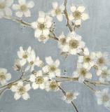 Silver Blossoms I Poster von Elise Remender