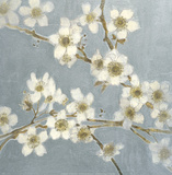 Silver Blossoms I Poster by Elise Remender