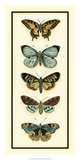 Butterfly Collector VI Giclee Print by Chariklia Zarris