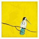 Birds On Branch Poster von Jace Grey