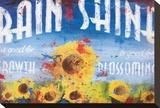 Rain & Shine Opspændt lærredstryk af Rodney White