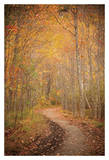Winding Autumn Path Print by Michael Hudson