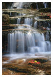 Waterfall Whitecap Stream Posters by Michael Hudson