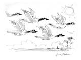 Geese flying on sunny day, wearing sunglasses. - Cartoon Giclee Print by Bernard Schoenbaum