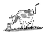 "A cow in a meadow looks at a can with that has a label on it that reads ""M…"" - New Yorker Cartoon Premium Giclee Print by Frank Modell"