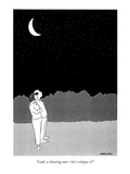 """Look, a shooting star—let's critique it!"" - New Yorker Cartoon Premium Giclee Print by Alex Gregory"