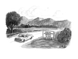 A couple  in car pass by a roadsign that reads 'Special Advertising Sectio… - New Yorker Cartoon Premium Giclee Print by Warren Miller