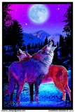 Timberwolves Flocked Blacklight Poster アートポスター