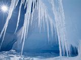 Icicles and Sun, Alta Bay, Antarctica Fotografie-Druck von Frans Lanting
