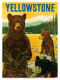 Yellowstone Go Greyhound c.1960s Affischer