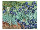 Les iris, 1889 Reproduction procédé giclée par Vincent van Gogh
