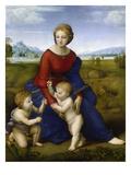 La  Madone du Belvédère Reproduction procédé giclée par  Raphael