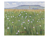 Meadow of Flowers, about 1901 Gicléetryck av Ferdinand Hodler