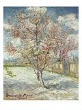 Bluehende Pfirsichbaeume (Souvenir De Mauve), 1888 Giclée-Druck von Vincent van Gogh