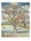 Bluehende Pfirsichbaeume (Souvenir De Mauve), 1888 Lámina giclée por Vincent van Gogh