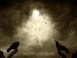 Return of the Crows Fotografie-Druck von  Exploding Art
