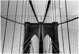Brooklyn Bridge NYC Láminas