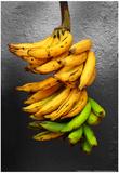 Yellow Bananas Posters