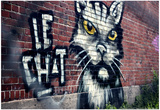 Le Chat Graffiti Montreal Canada Posters