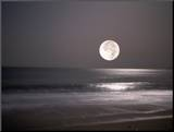 Volle maan Foto op hout van Mitch Diamond