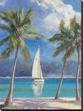 Island Breeze Stretched Canvas Print by Nenad Mirkovich