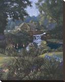 Victoria's Garden Stretched Canvas Print by Nenad Mirkovich