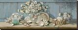 Collection de coquilles de mer II Toile tendue sur châssis par Janet Kruskamp