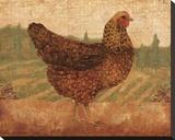 Tuscan Hen I Bedruckte aufgespannte Leinwand von Lisa Ven Vertloh